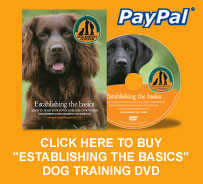 Establishing the basics DVD